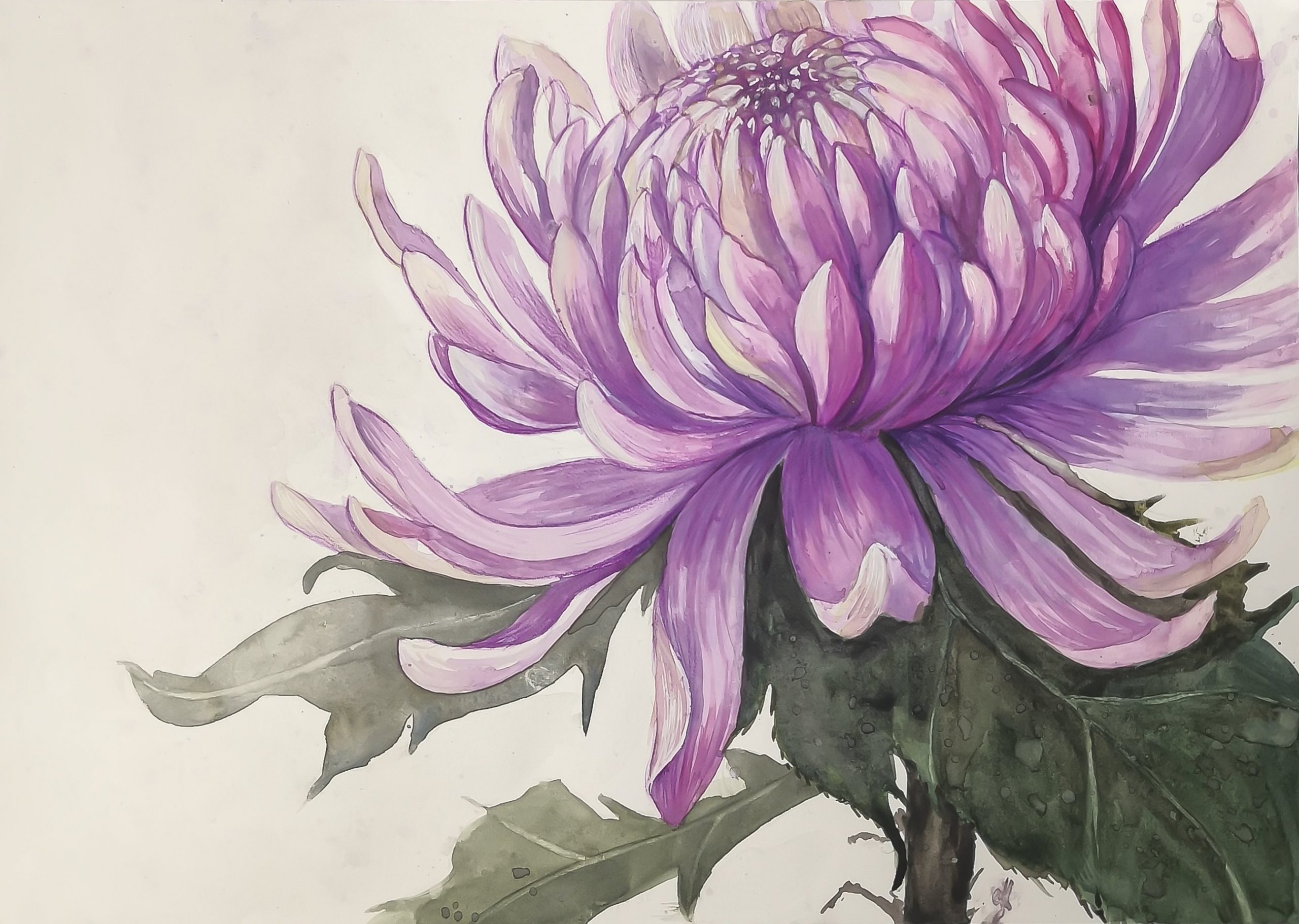 Tutorial Motivos Florales con Acuarela Cotman